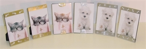 Picture of Frame Cats